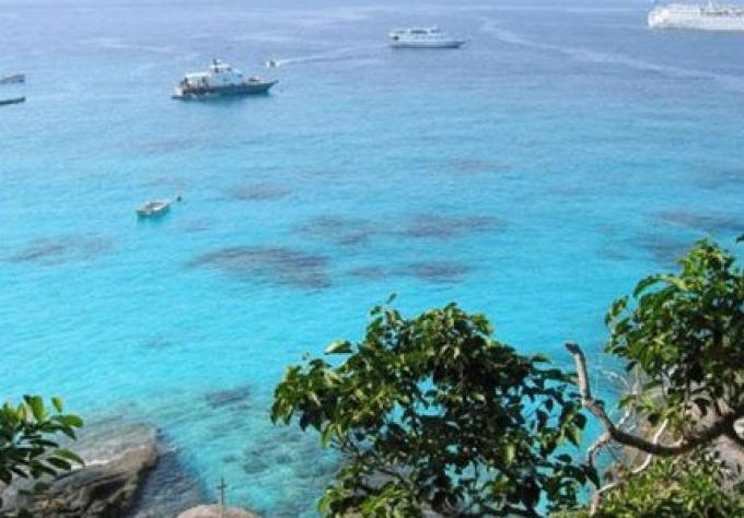 Un expert souleve l alarme sur les dommages marins aux Similan