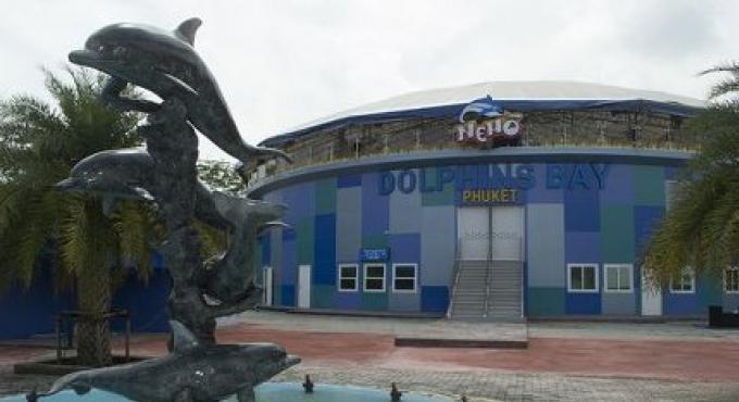 L'ouverture douce du delphinarium de Phuket