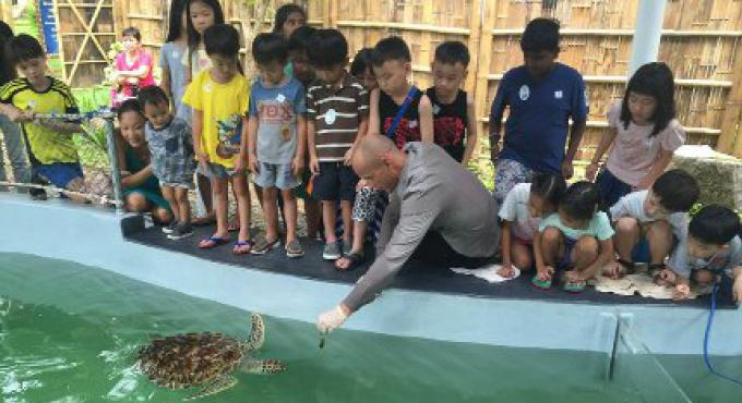 Les Tortues Shelter & le Centre d'Education ouvert à Mai Khao