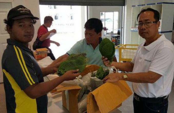 Un paquet de kratom saisi au Bureau de Poste de Phuket
