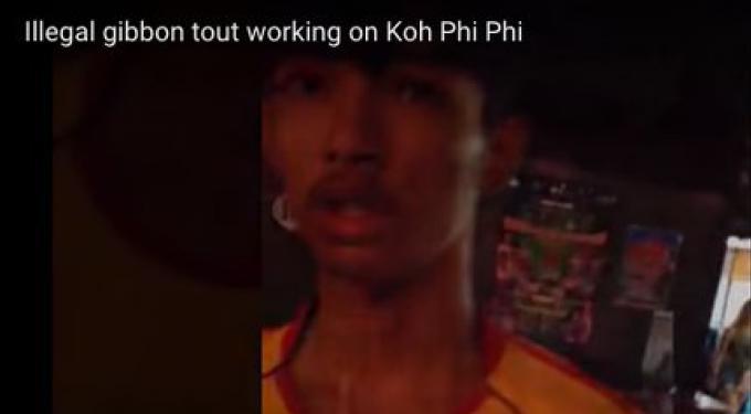 La police de Phi Phi lutte contre les rabatteurs de gibbon