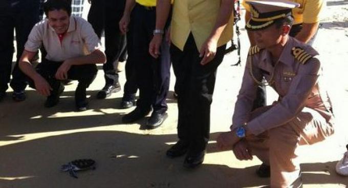 La Plage de Phuket nettoyée en l'honneur de SM le Roi