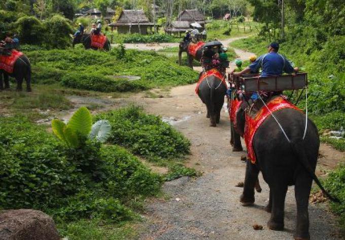 Les entreprises touristiques de Phuket doivent être légales à la fin de Janvier, ou bien...