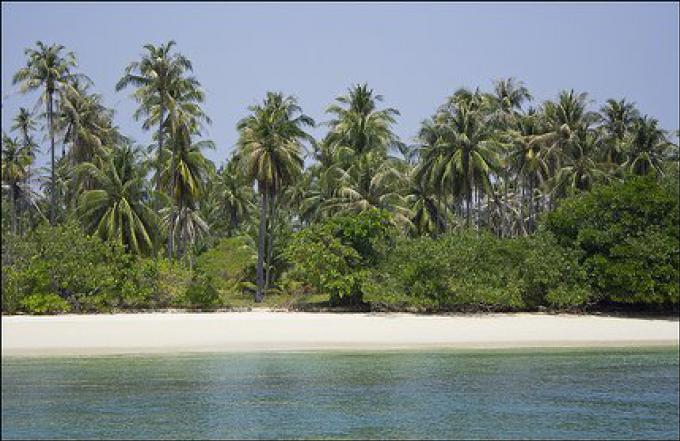 Explorer: S'aventurer avec un hors-bord autour de l'île de Phuket