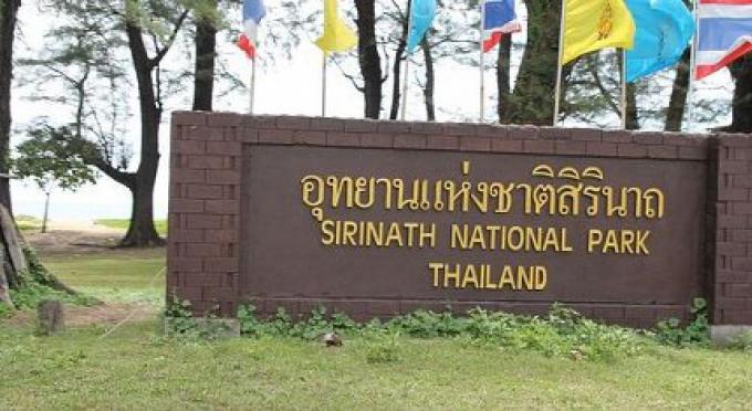 Des fonctionnaires véreux ont vendu des terres de réserve forestières à Phuket