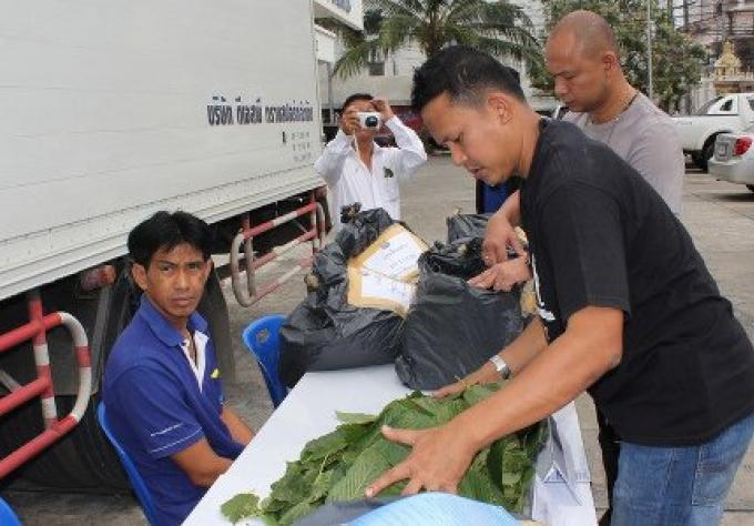 Police touristique intercepte du kratom expédié à Phuket