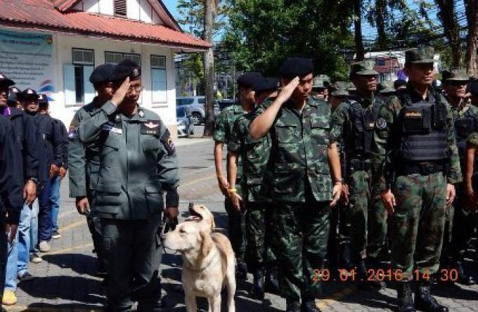 Flics et chiens