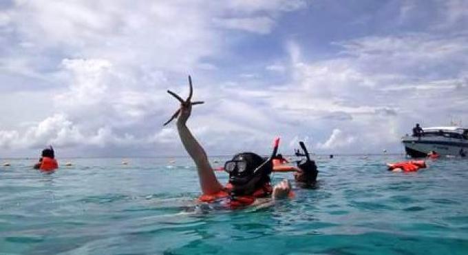 Touristes chinois et russes ciblés pour les dommages aux coraux au large de Phuket