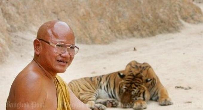 Temple Tiger fait face à d'autres accusations