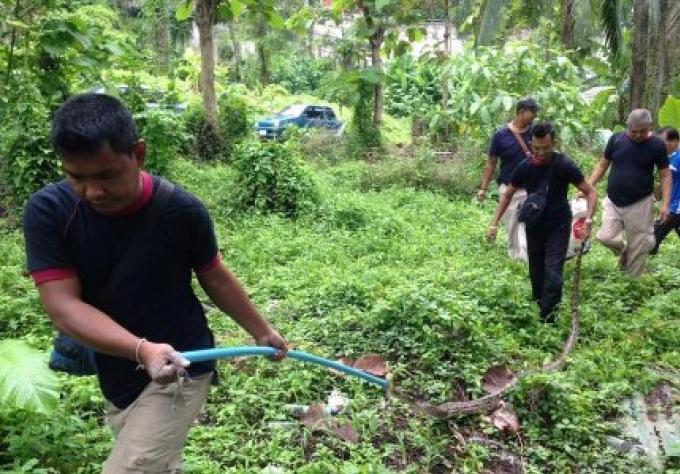 Un python capturé près d'une école de Patong