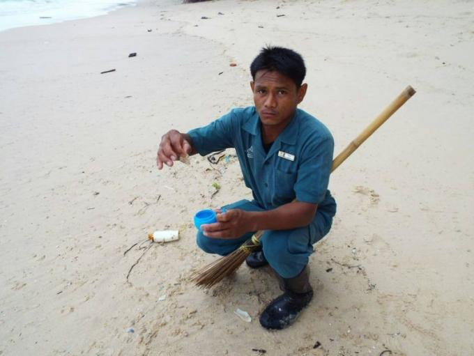 Des milliers de méduses échouées sur les plages de l'ouest de Phuket