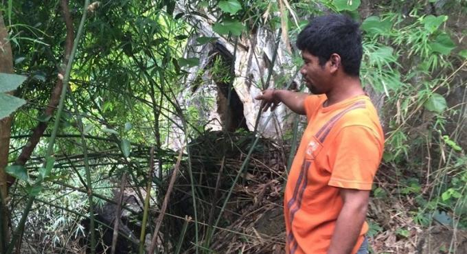 De nouveaux témoignages reportent le début du procès suite à l'agression sexuelle de Krabi