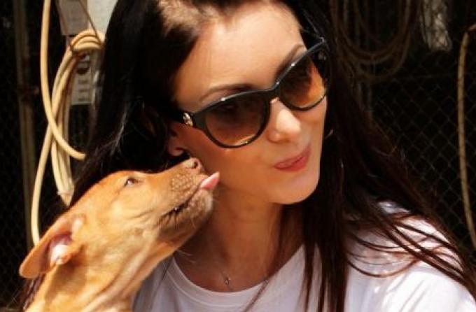 Ancienne Miss Univers établit un partenariat avec SoiDog de Phuket