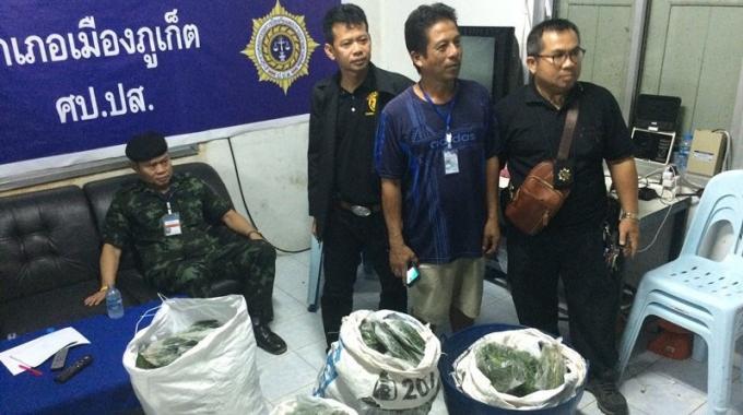Un homme arrêté à Phuket en possession de plus de 100 kilos de kratom