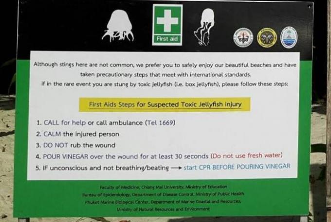 Mise en garde contre les méduses a Krabi
