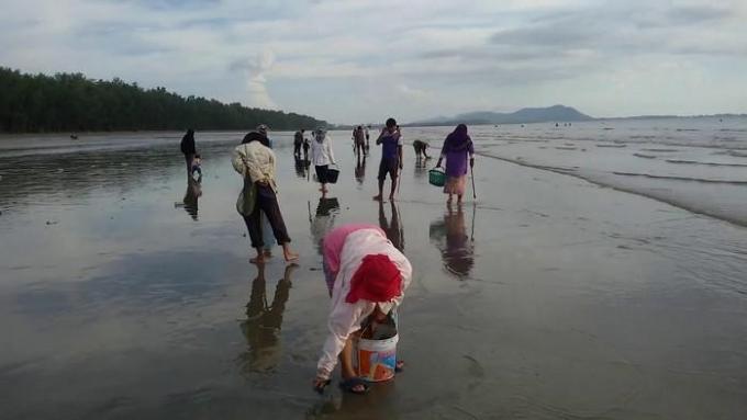 Koh Lanta : La fructueuse récolte des crustacés