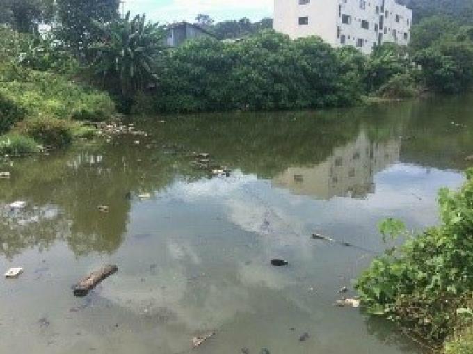 Bourré, il part à la chasse aux escargots et se noie dans un étang de Phuket