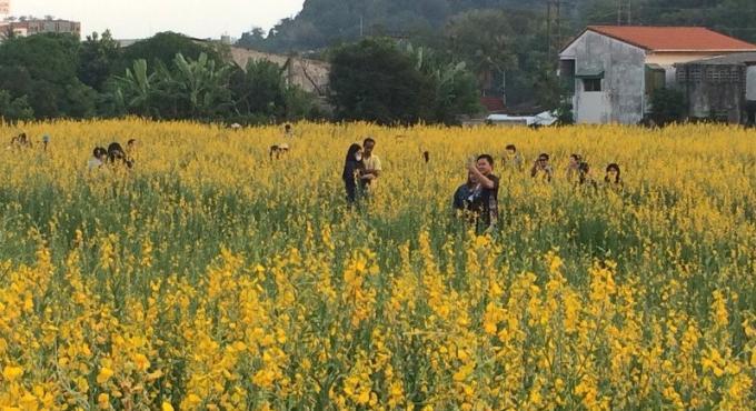 Les automobilistes de Phuket s'arrêtent au jaune