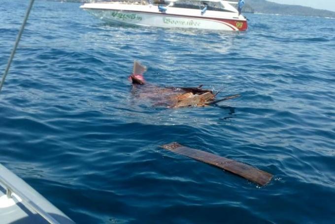 Collision entre un speedboat et un longtail a Maya Bay