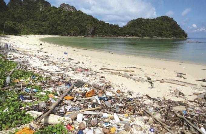 Des petites initiatives pour nettoyer l'environnement