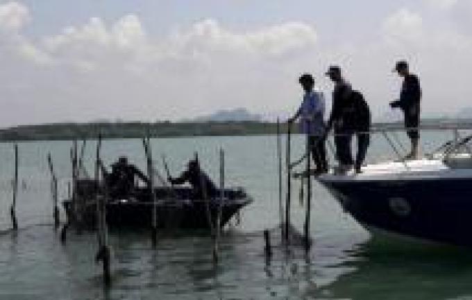 Les gros bateaux interdit de pêche pendant la saison de la reproduction
