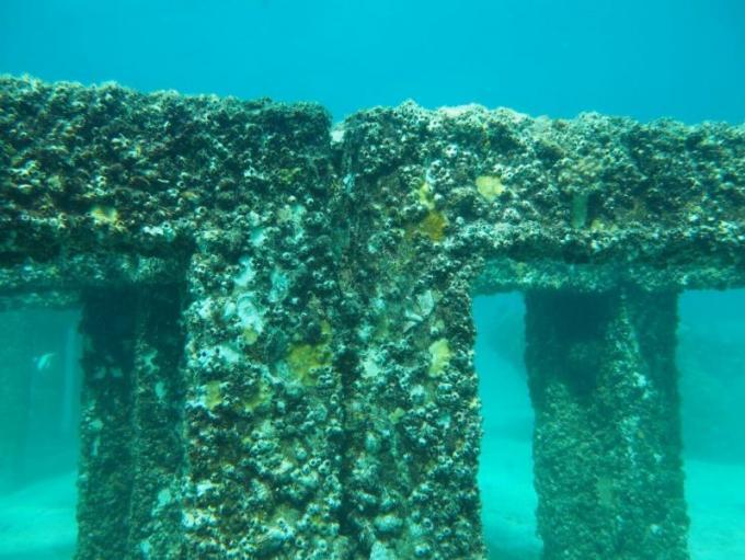 Le DMCR ravi du développement du récif artificiel de Maithon Island