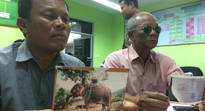 Le camp pour éléphant accuse de ne pas vouloir rendre le pachyderme volé