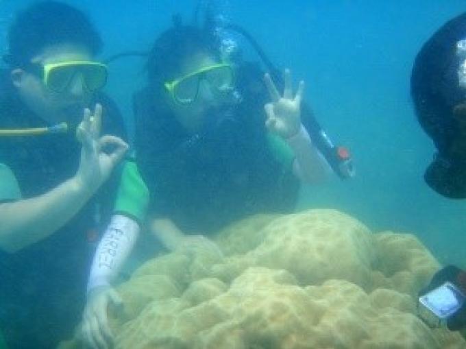 Les officiels de Phuket luttent pour sauver Coral Island, le tourisme ayant déjà détruit 75% du r