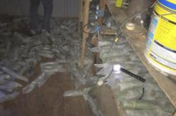 Deux hommes arrêtés avec plus de 250 000 baths de krathom