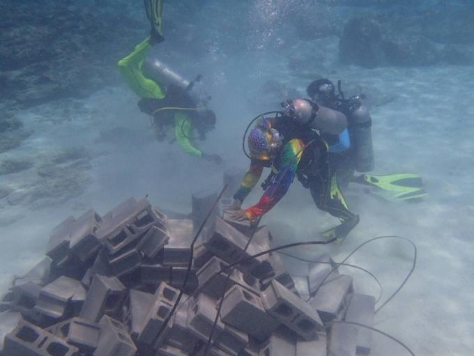 Reconstruction des récifs endommagés par le tourisme