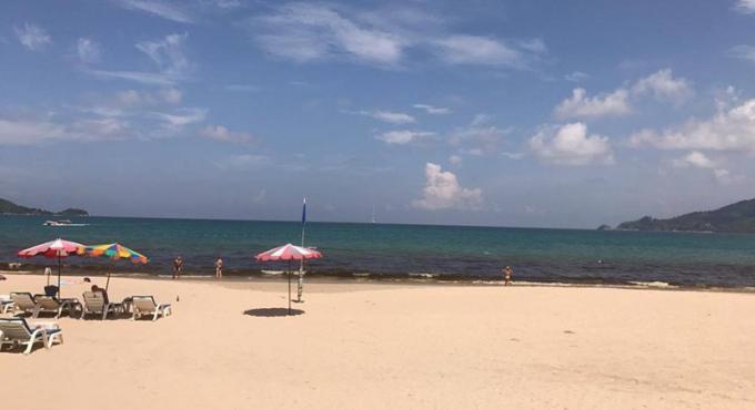 Du plancton apparait près des plages de Phuket et incite la maire de Patong à agir pour le traitem