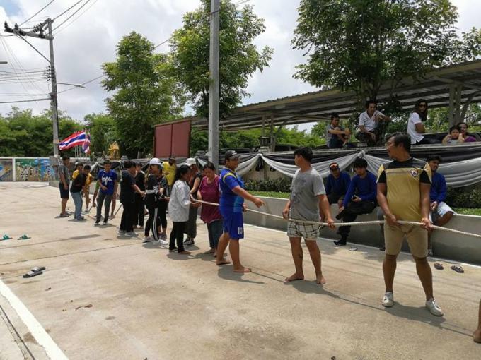 Les habitants de Phuket se jettent dans la boue pour le concours d'attrapage de cochon