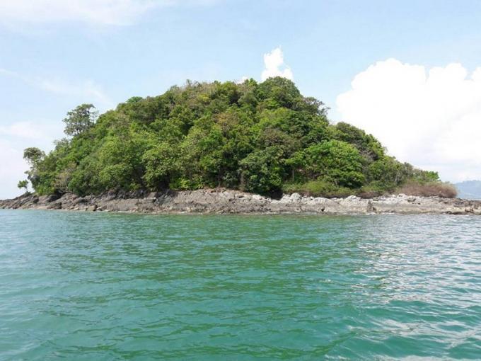 Les singes de Phuket 'relogés' sur des iles au large
