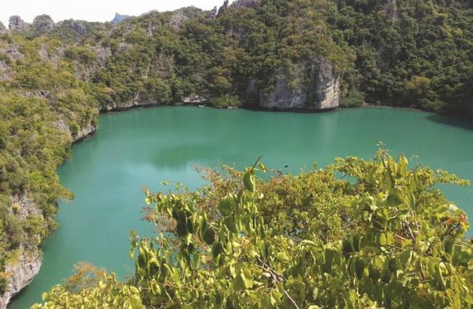 Sur le pont : Samui – Joyau thaï à l'état brut