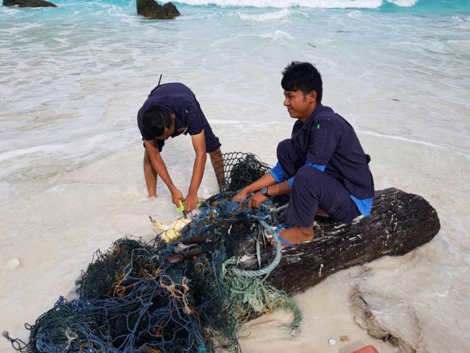 Une tortue sauvée d'un filet de pêche au sud de Phuket