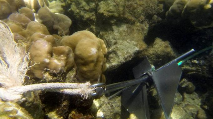 Des bateaux de tourisme jettent l'ancre sur des récifs de Phi Phi