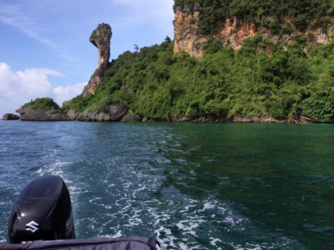 Plus de 10,000 méduses toxiques près de Gai Island, a Krabi