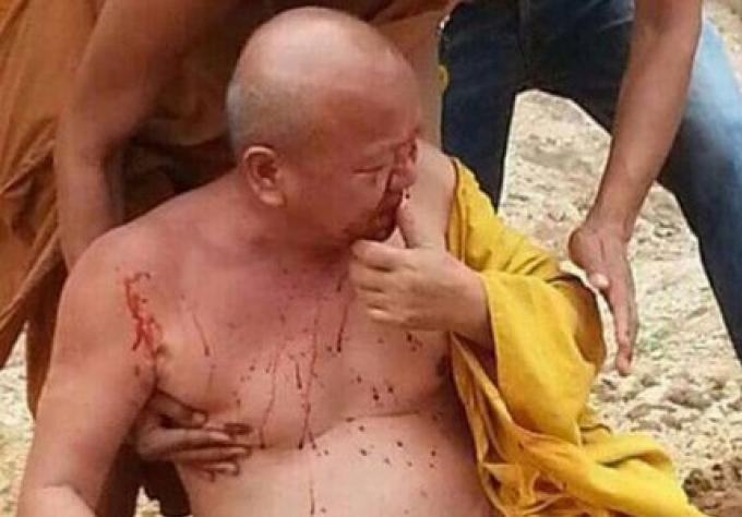 Le Monk du tiger temple a été attaqué par un tigre