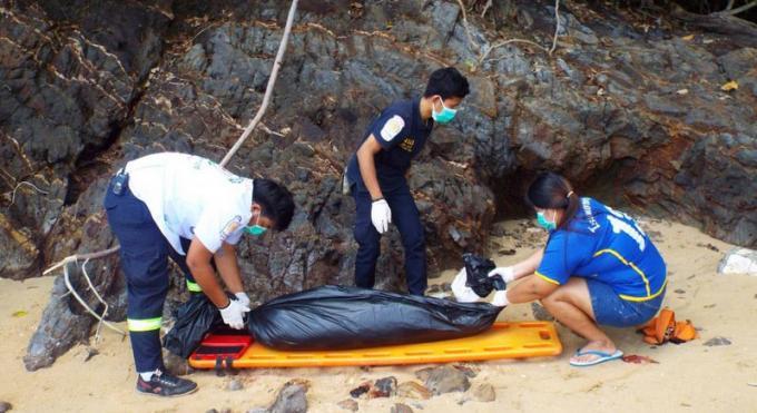 Un jeune lamantin retrouvé mort sur une plage de Phuket
