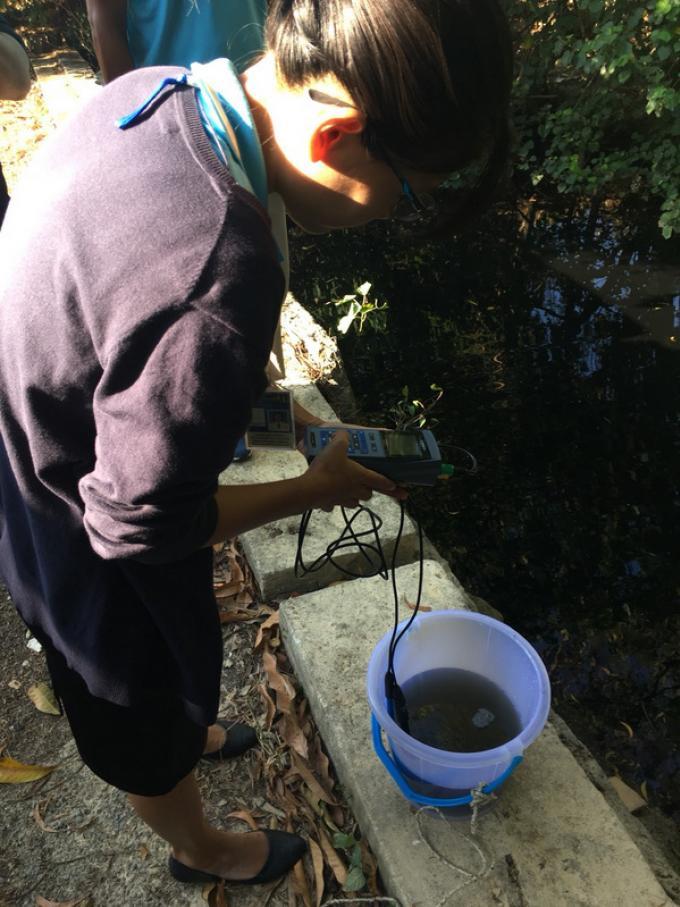 Le gouverneur de Phuket intervient pour résoudre les problème des eaux usées de la baie de Chalon