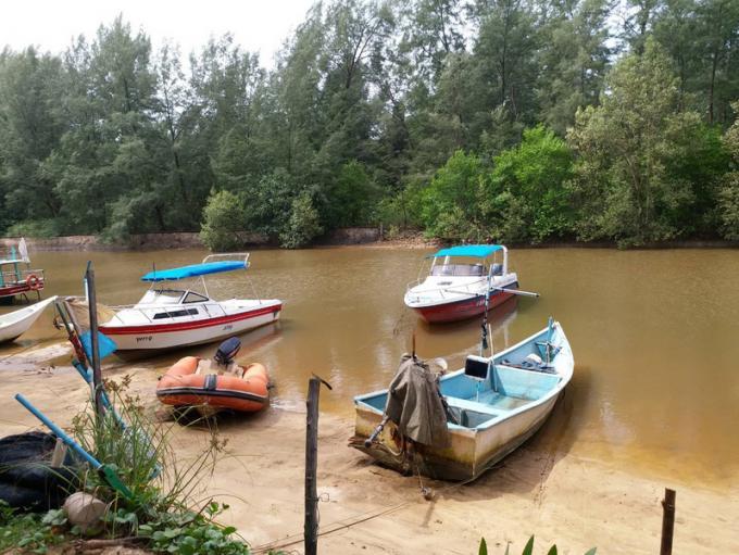 Nouvelle enquête sur le probable empiètement sur une mangrove