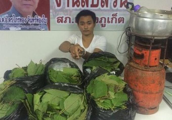 Un homme arrêté pour possession de kratom à Phuket