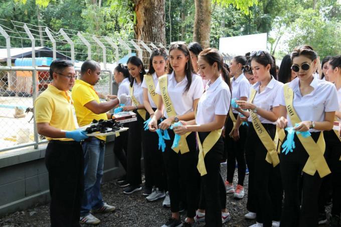 Des Miss au refuge pour chiens de Phuket, les dons affluent