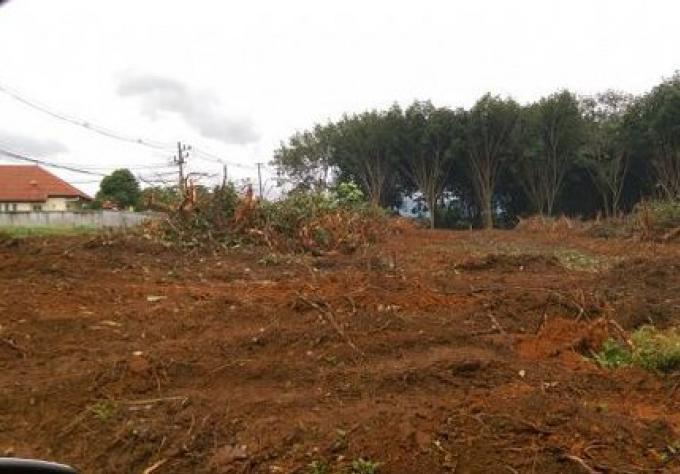 Les Résidents du Parc de Phuket s'opposent à un camp de travailleurs