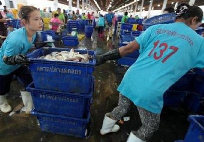 Les marchés de fruits de mer revendiquent une pénurie imminente