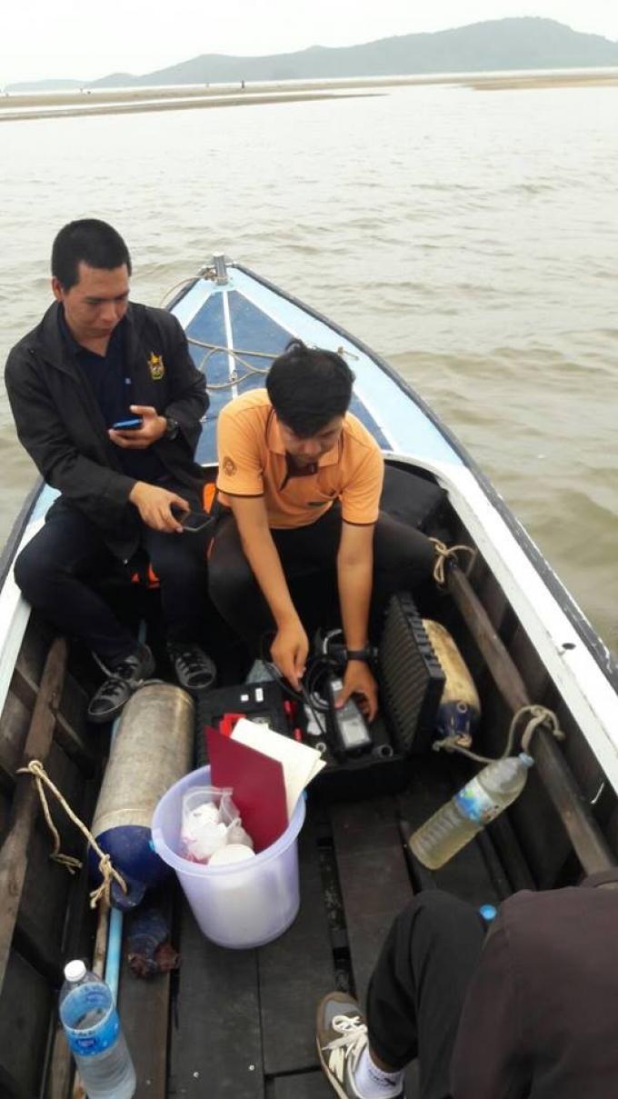 Les touristes de retour sur le canal après un nettoyage express