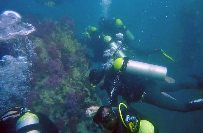 Les plongeurs conviés à la Journée Internationale du Nettoyage des Côtes