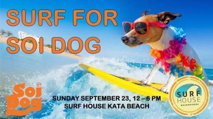Surf pour Soi Dog avec SurfHouse Phuket