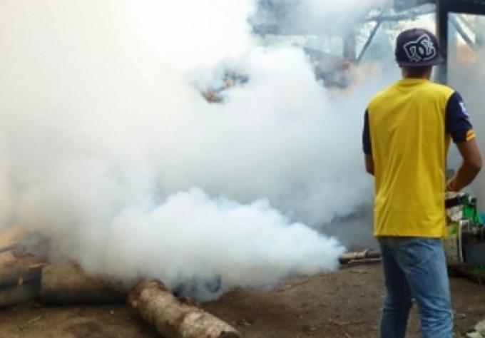 Les étrangers ne sont pas avertis de la dengue déclare le sondage