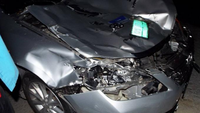 Accueil 'rustique' pour des touristes coréens, son taxi percute une vache